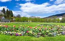 beautiful park in spring with tulip flowers blossoming in baden-baden germany
